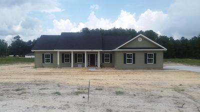Waycross Single Family Home For Sale: 3257 Driggers Rd