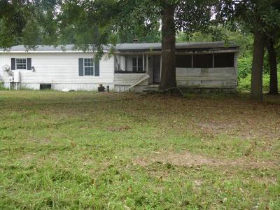 Blackshear Single Family Home For Sale: 6801 0000 Tot Dr
