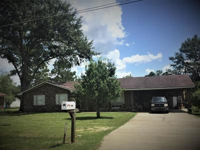 Blackshear Single Family Home For Sale: 821 Dogwood Dr