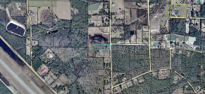 Homerville Residential Lots & Land For Sale: Smith Rd