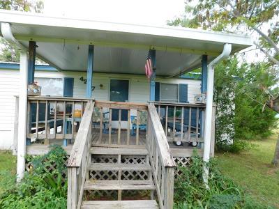 Blackshear Single Family Home For Sale: 4207 Old Hoboken Road