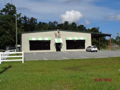 Jesup Commercial For Sale: 980 Hwy 301 South