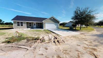 Blackshear Single Family Home For Sale: 590 Pinehurst Dr