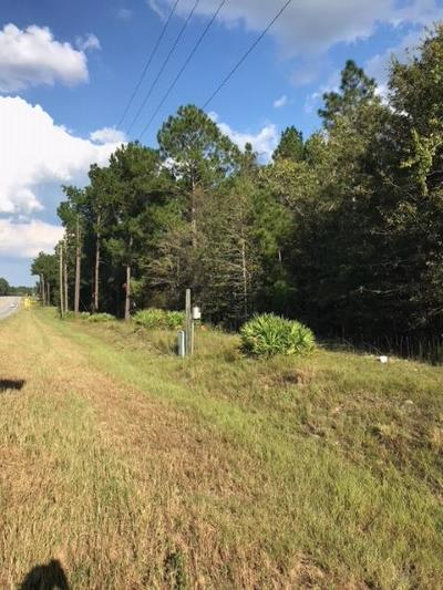 Alma Residential Lots & Land For Sale: 991 E Ga Hwy