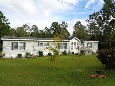 Jesup Single Family Home For Sale: 73 Elizabeth St