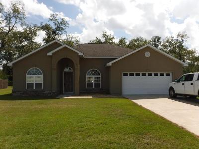 Blackshear Single Family Home For Sale: 3475 Moore St