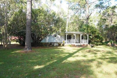 Waycross Single Family Home For Sale: 2595 Ternest Road