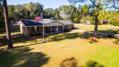 Waycross Single Family Home For Sale: 158 Timber Lane