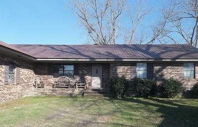 Waycross Single Family Home For Sale: 1041 Smith Road