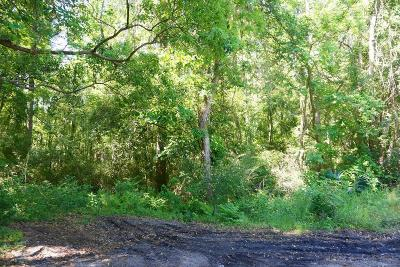 Residential Lots & Land For Sale: 00 W Waring St