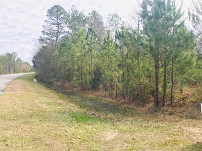 Residential Lots & Land For Sale: Broadhurst