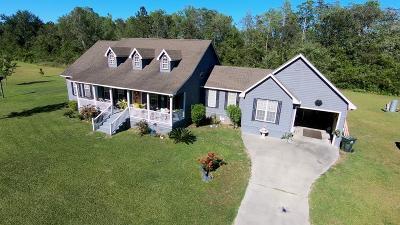 Homerville Single Family Home For Sale: 173 Tanner Lane