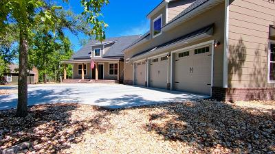 Blackshear Single Family Home For Sale: 1340 River Landing Way