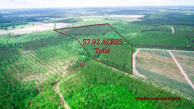 Waycross Residential Lots & Land For Sale: Barn Owl Ln 57.92 Ac