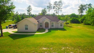 Waycross Single Family Home For Sale: 620 Saddle Circle