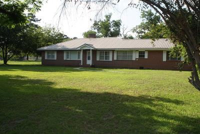Waycross Single Family Home For Sale: 203 East Wacona Drive