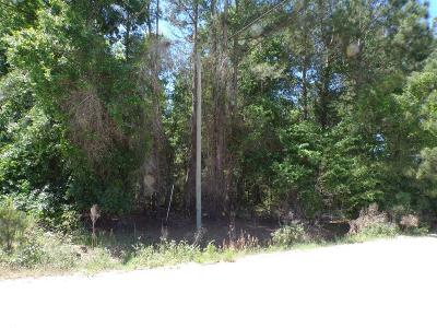 Waycross Residential Lots & Land For Sale: 3935 Beaver Trail