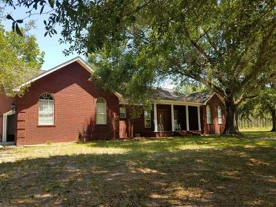Waycross Single Family Home For Sale: 2607 Mose Thrift Road