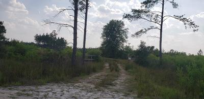 Waycross Residential Lots & Land For Sale: 4188 Griffin Rd.