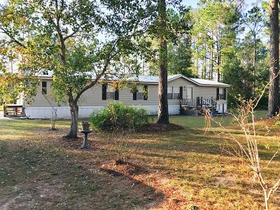 Waycross Single Family Home For Sale: 3252 Deer Island Rd