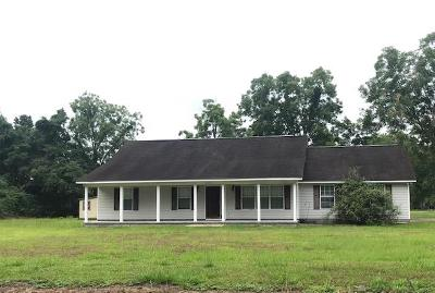 Waycross Single Family Home For Sale: 4133 Albany Ave