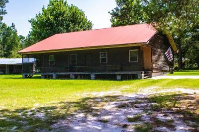 Blackshear Single Family Home For Sale: 4217 Money Hole Rd