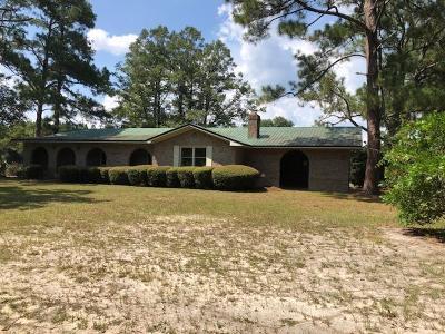 Homerville Single Family Home For Sale: 1097 Richard James Road