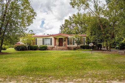 Homerville Single Family Home For Sale: 59 Buck Griffis Rd