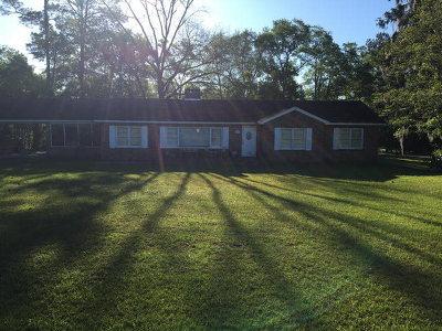 Barwick Single Family Home For Sale: 3109 Ga Hwy 33