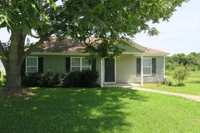 Pelham Single Family Home For Sale: 320 Williams St
