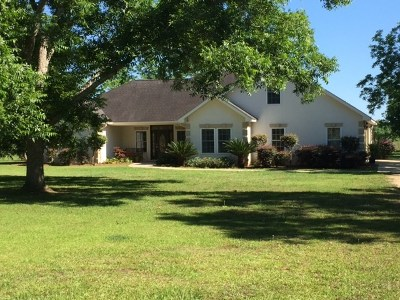 Cairo Single Family Home For Sale: 334 Dollar Rd.