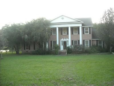 Ochlocknee Single Family Home For Sale: 3189 Stewart Road