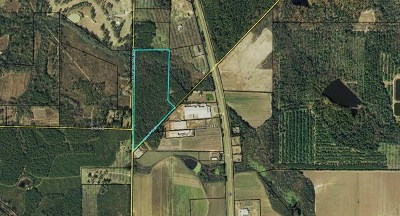 Residential Lots & Land For Sale: 00 Ga Hwy 3/Millpond Rd.