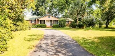 Cairo Single Family Home For Sale: 3060 S Hwy 111