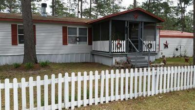 Ochlocknee Single Family Home For Sale: 174 Lockerman Rd