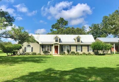Boston Single Family Home For Sale: 3917 Dixie Barwick