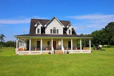 Boston Single Family Home For Sale: 1689 Watkins Road