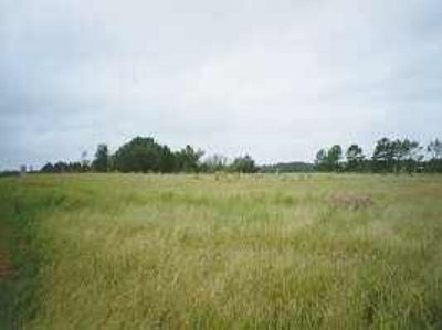 Cairo GA Residential Lots & Land For Sale: $13,500