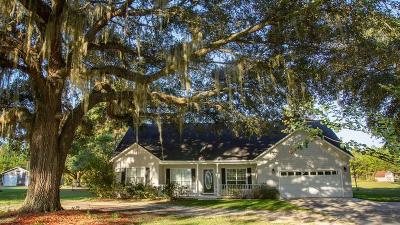 Ochlocknee Single Family Home For Sale: 662 West Shore Dr