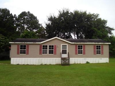 Boston Single Family Home For Sale: 445 Oakridge Street