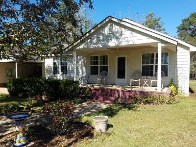 Ochlocknee Single Family Home For Sale: 731-4 Drew Road #LOT 4