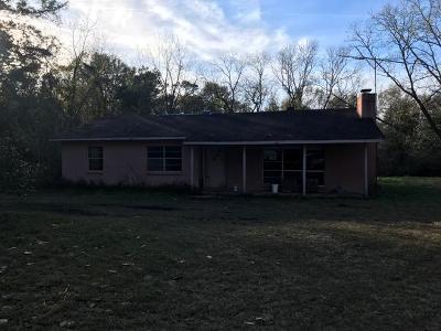 Ochlocknee Single Family Home For Sale: 2643 Ga Hwy 188