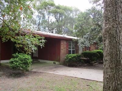 Boston Single Family Home For Sale: 402 E Horn St
