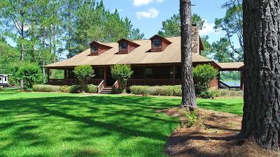 Ochlocknee Single Family Home For Sale: 387 Southshore Dr.