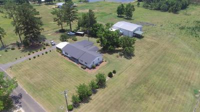 Pelham Single Family Home For Sale: 261 Palmer Rd
