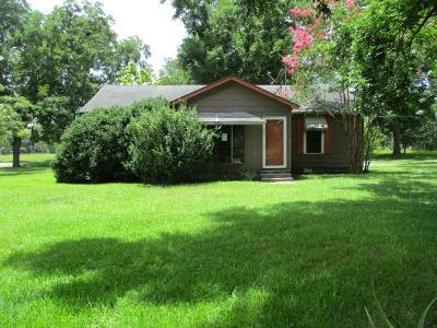 Ochlocknee Single Family Home For Sale: 3728 Dollar Store Rd