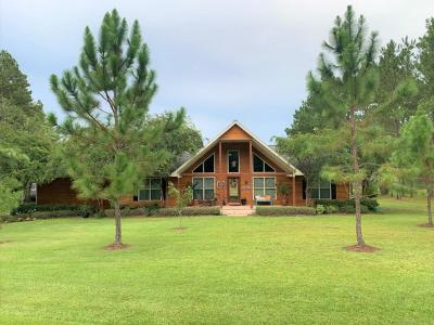 Ochlocknee Single Family Home For Sale: 371 Southshore Drive