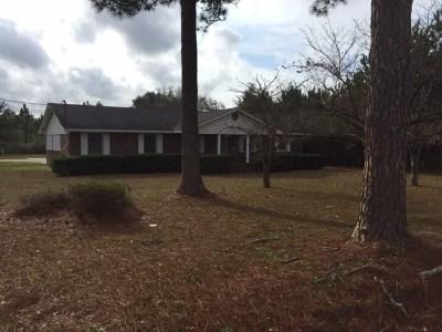 Lake Blackshear, Cordele, Warwick, Arabi, Ashburn, Rebecca, Sycamore Single Family Home For Sale: 382 East Jackson Avenue