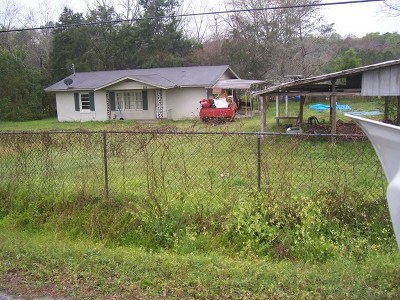 Brookfield, Chula, Tifton, Irwinville, Omega, Poulan, Sycamore, Sumner, Ty Ty, Ashburn, Rebecca Single Family Home For Sale: 101 Nelson Street