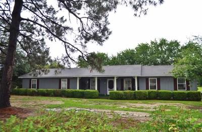 Ocilla, Irwinville, Chula, Wray , Abbeville, Fitzgerald, Mystic, Ashburn, Sycamore, Rebecca Single Family Home For Sale: 117 Burnside Road